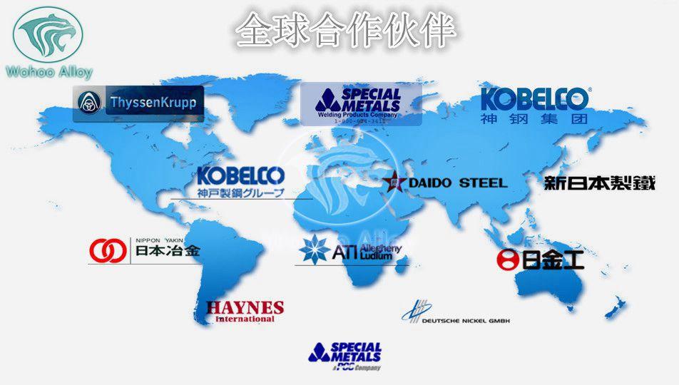 全球合作伙伴_副本.jpg